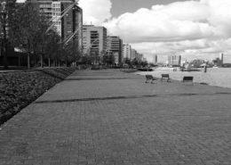 Het Nieuwe Maas Parcours